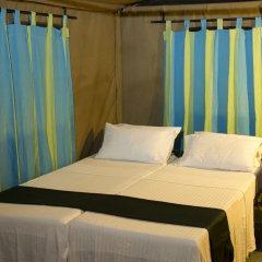 Отель Big Game Camp Yala Шри-Ланка, Катарагама - отзывы, цены и фото номеров - забронировать отель Big Game Camp Yala онлайн комната для гостей фото 3