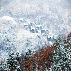 Отель Chalet Resort Южная Корея, Пхёнчан - отзывы, цены и фото номеров - забронировать отель Chalet Resort онлайн