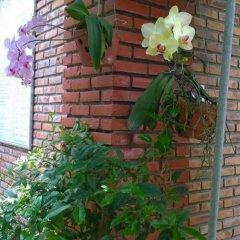 Отель Viet House Homestay Вьетнам, Хойан - отзывы, цены и фото номеров - забронировать отель Viet House Homestay онлайн фото 20