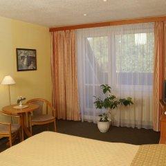 Отель Lazensky Hotel Pyramida I Чехия, Франтишкови-Лазне - отзывы, цены и фото номеров - забронировать отель Lazensky Hotel Pyramida I онлайн комната для гостей фото 5