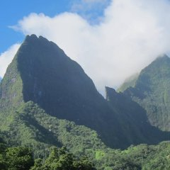 Отель Village Temanoha Французская Полинезия, Папеэте - отзывы, цены и фото номеров - забронировать отель Village Temanoha онлайн фото 3