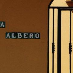 Отель Villa Albero сауна
