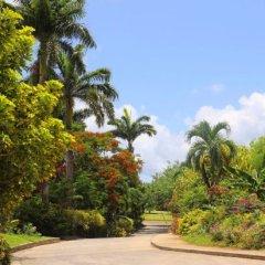 Отель Coco Palm фото 9