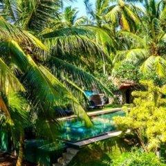 Отель Shangri-Lanka Villa Шри-Ланка, Бентота - отзывы, цены и фото номеров - забронировать отель Shangri-Lanka Villa онлайн фото 10
