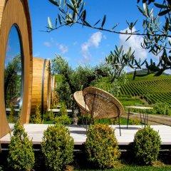 Отель The Wine House Hotel - Quinta da Pacheca Португалия, Ламего - отзывы, цены и фото номеров - забронировать отель The Wine House Hotel - Quinta da Pacheca онлайн фото 9
