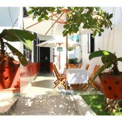 Отель Sunny Garden Homestay детские мероприятия