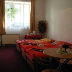Отель Penzion Hlinkova Чехия, Пльзень - отзывы, цены и фото номеров - забронировать отель Penzion Hlinkova онлайн комната для гостей фото 5