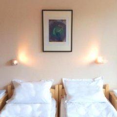 Отель Hinovi Hvoyna Болгария, Чепеларе - отзывы, цены и фото номеров - забронировать отель Hinovi Hvoyna онлайн комната для гостей фото 4