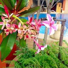 Отель Benwadee Resort фото 9