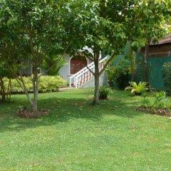 Отель Bougain Villa Шри-Ланка, Берувела - отзывы, цены и фото номеров - забронировать отель Bougain Villa онлайн фото 8