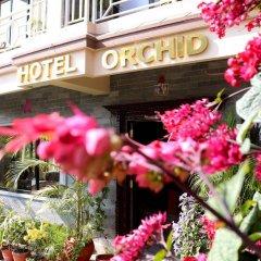Отель Orchid Непал, Покхара - отзывы, цены и фото номеров - забронировать отель Orchid онлайн фото 16