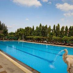 Отель Pinnacle Grand Jomtien Resort с домашними животными