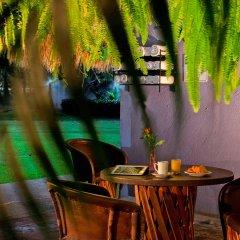 Отель Comfort Inn Puerto Vallarta Пуэрто-Вальярта питание