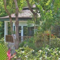 Отель Tropical Hideaway фото 7