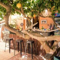 Отель Babis Studios Греция, Аргасио - отзывы, цены и фото номеров - забронировать отель Babis Studios онлайн гостиничный бар
