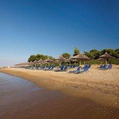 Blue Dolphin Hotel пляж фото 2