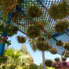 Отель La Villa Mandarine Марокко, Рабат - отзывы, цены и фото номеров - забронировать отель La Villa Mandarine онлайн фото 2