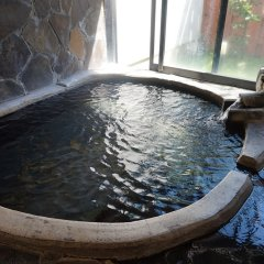 Отель Oyado Nurukawa Onsen Хидзи бассейн фото 3