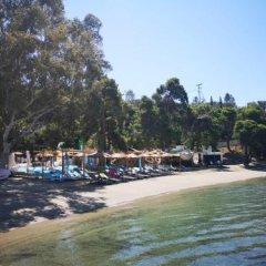 Отель Valente Perlia Rooms Греция, Порос - отзывы, цены и фото номеров - забронировать отель Valente Perlia Rooms онлайн пляж