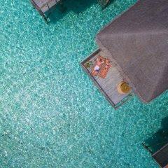 Отель Meeru Island Resort & Spa Мальдивы, Остров Фуранафуши - 10 отзывов об отеле, цены и фото номеров - забронировать отель Meeru Island Resort & Spa онлайн бассейн фото 2