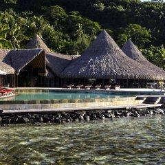 Отель Sofitel Bora Bora Marara Beach Hotel Французская Полинезия, Бора-Бора - отзывы, цены и фото номеров - забронировать отель Sofitel Bora Bora Marara Beach Hotel онлайн бассейн