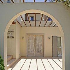 Отель Thera Mare Hotel Греция, Остров Санторини - 1 отзыв об отеле, цены и фото номеров - забронировать отель Thera Mare Hotel онлайн фото 9