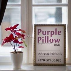 Отель Purple Pillow Литва, Вильнюс - отзывы, цены и фото номеров - забронировать отель Purple Pillow онлайн интерьер отеля фото 2