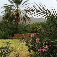 Отель AppartHotel Khris Palace Марокко, Уарзазат - отзывы, цены и фото номеров - забронировать отель AppartHotel Khris Palace онлайн фото 7