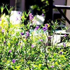 Отель Hoi An Garden Villas фото 5