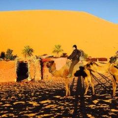 Отель Auberge Kasbah Des Dunes Марокко, Мерзуга - отзывы, цены и фото номеров - забронировать отель Auberge Kasbah Des Dunes онлайн фото 13
