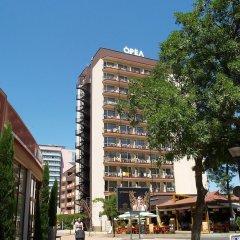Отель Orel - Все включено Болгария, Солнечный берег - отзывы, цены и фото номеров - забронировать отель Orel - Все включено онлайн фото 10