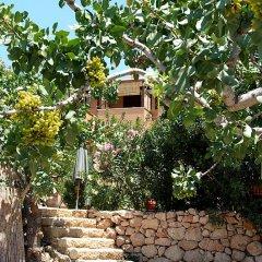 Отель Rastoni Греция, Эгина - отзывы, цены и фото номеров - забронировать отель Rastoni онлайн фото 4