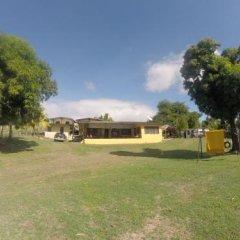 Отель The Beehive Fiji фото 6