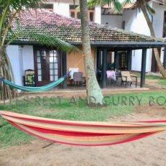 Отель Turtles Rest and Curry Bowl фото 4