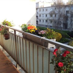 Отель Apartment24 Schonbrunn Австрия, Вена - отзывы, цены и фото номеров - забронировать отель Apartment24 Schonbrunn онлайн балкон