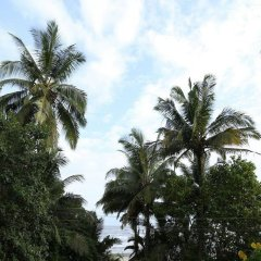 Отель Room Maangta 326 - Pernem Goa Гоа спортивное сооружение