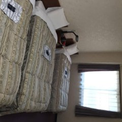 Shinseto Station Hotel Сето удобства в номере