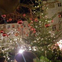 Отель B&B Mele d'Oro Терлано помещение для мероприятий фото 2
