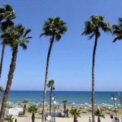Отель The Dive Кипр, Ларнака - отзывы, цены и фото номеров - забронировать отель The Dive онлайн пляж