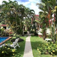 Отель Falang Paradise фото 15
