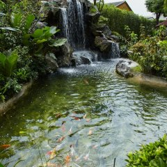 Отель Royal Suite Residence Boutique Бангкок приотельная территория фото 2