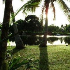Отель Golden Palms Retreat Фиджи, Вити-Леву - отзывы, цены и фото номеров - забронировать отель Golden Palms Retreat онлайн приотельная территория