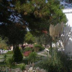 Club Mackerel Holiday Village Турция, Карабурун - отзывы, цены и фото номеров - забронировать отель Club Mackerel Holiday Village онлайн фото 24