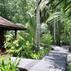 Отель Gangehi Island Resort фото 5