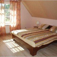 Отель Babrukas Литва, Тракай - отзывы, цены и фото номеров - забронировать отель Babrukas онлайн комната для гостей фото 3