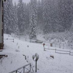 Апартаменты Ski Apartment In Castle Complex Пампорово фото 17