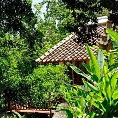 Отель Thipwimarn Resort Koh Tao Таиланд, Остров Тау - отзывы, цены и фото номеров - забронировать отель Thipwimarn Resort Koh Tao онлайн фото 7