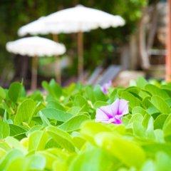 Отель Anahata Resort Samui (Old The Lipa Lovely) Таиланд, Самуи - отзывы, цены и фото номеров - забронировать отель Anahata Resort Samui (Old The Lipa Lovely) онлайн фото 6