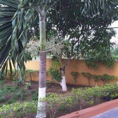 Отель Cazwin Villas Ямайка, Монтего-Бей - отзывы, цены и фото номеров - забронировать отель Cazwin Villas онлайн фото 3