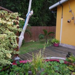 Отель Bungalow With one Bedroom in Guadeloupe, With Pool Access, Enclosed Ga